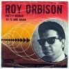 roy-orbison-160390.jpg