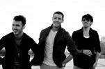 jonas-brothers-478455.jpg