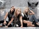 vanilla-ninja-239907.jpg