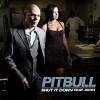 pitbull-269537.jpg