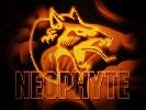 neophyte-335679.jpg