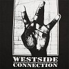 west-side-connection-342665.jpg