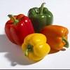 pepper-478486.jpg