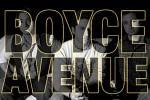 boyce-avenue-264502.jpg