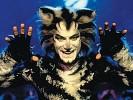 soundtrack-the-cats-185859.jpg