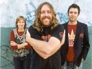 spiderbait-512905.jpg