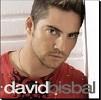 david-bisbal-130088.jpg