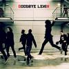 goodbye-lenin-132459.jpg