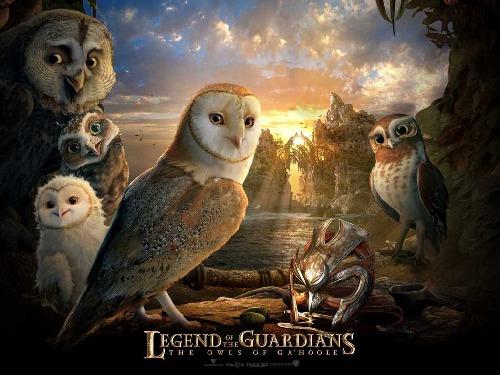 Výsledek obrázku pro legenda o sovích strážcích