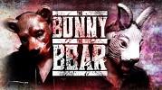 bunny-the-bear-the-292211.jpg