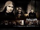 nasum-264623.jpg