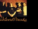 withered-beauty-598273.jpg