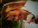 iveta-bartosova-505094.jpg