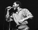 otis-redding-570541.jpg