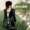 catlow-315695.jpg