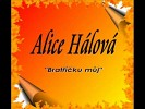 alice-halova-135835.jpg