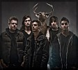 ice-nine-kills-492473.jpg