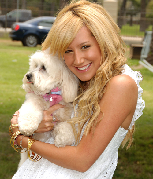 ashley-tisdale-22731.jpg