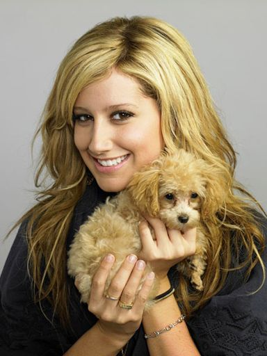 ashley-tisdale-55477.jpg
