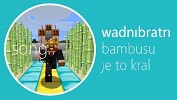 wadnibratripari-544105.jpg