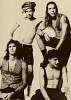 red-hot-chili-peppers-353640.png