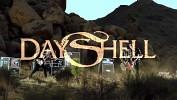 dayshell-472294.jpg