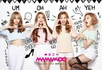 mamamoo-557535.jpg
