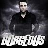 borgeous-507581.jpg