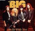mr-big-89796.jpg