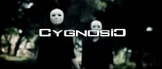cygnosic-528870.jpg