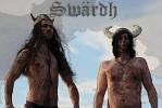 swardh-564324.jpg