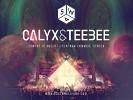 calex-teebee-565292.jpg