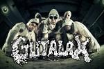 gutalax-569394.jpeg