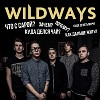 wildways-569756.jpg