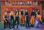 cherry-bullet-622812.jpg